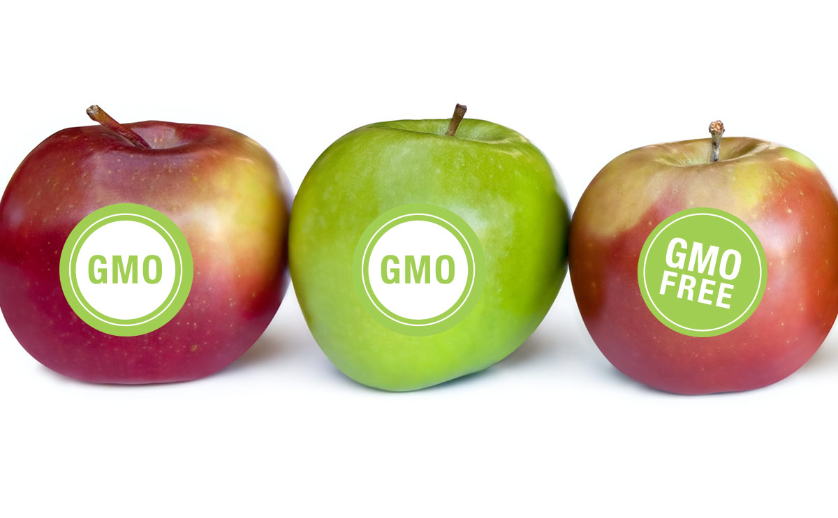 fda-regulation-of-gmo-labeling