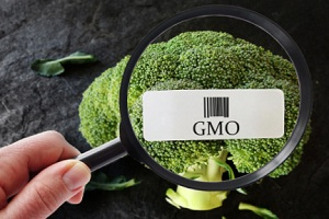 usda-gmo-labeling-update