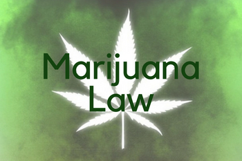 navigating-through-conflicting-laws-regarding-marijuana-use